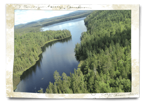view from the air temagami